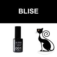 """гель-лак Кошачий Глаз """"BLISE"""""""